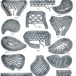 Design-Textile-Lace-pattern-1